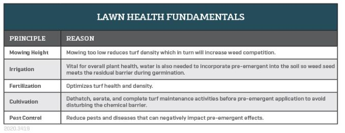 Turf health fundamentals to maximize the effects of preemergent herbicide application